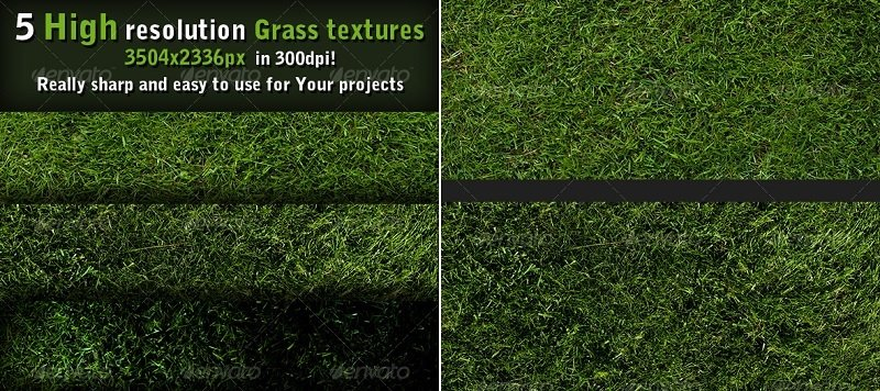 18 Seamless Grass Textures for Green Lawns and Pastures — Medialoot