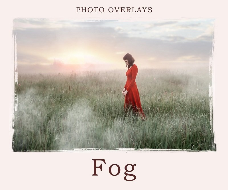 15 Hauntingly Beautiful Fog Overlays and Textures — Medialoot