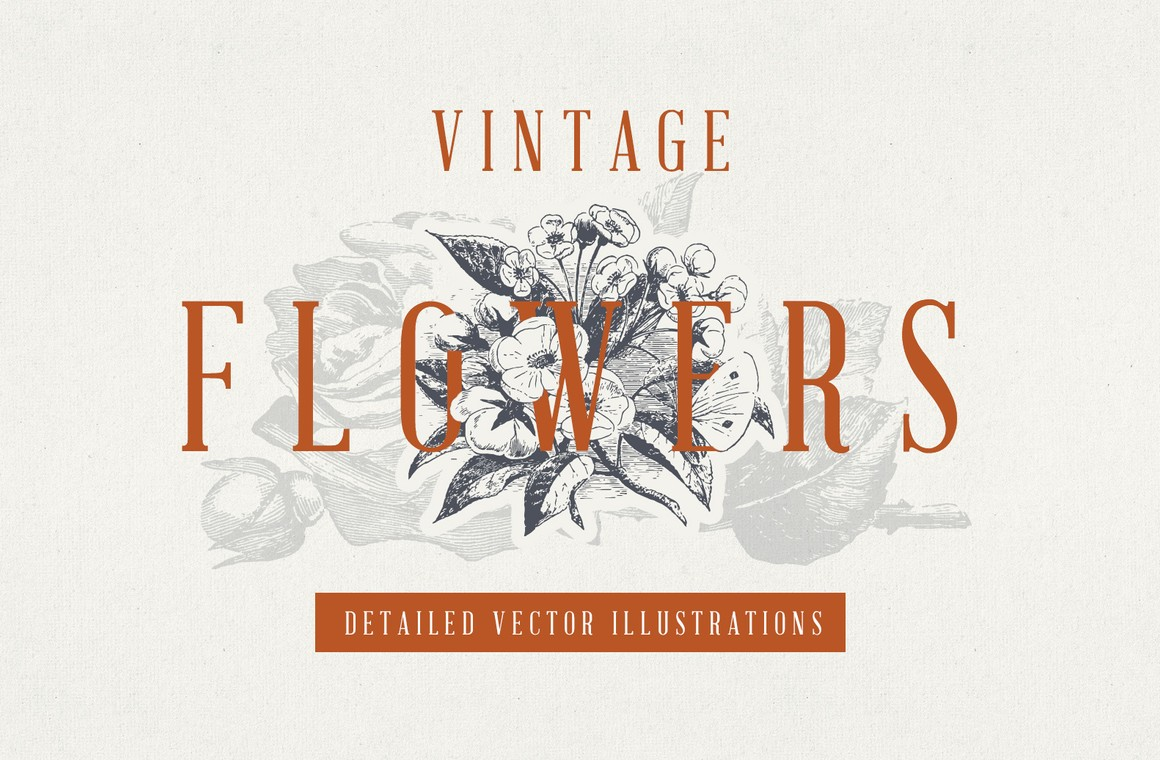 Vintage Floral Vector Illustrations
