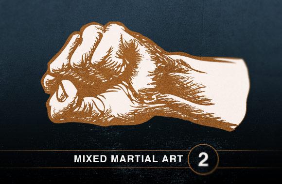 Mixed Martial Art Vol2