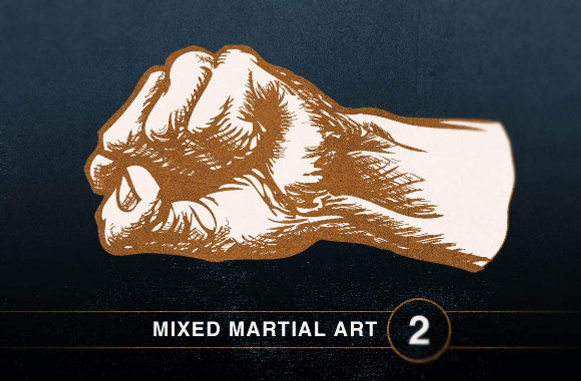 Mixed Martial Art Vol2