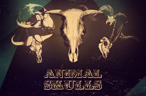 Animal Skull vectors