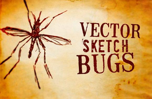 Illustrated Bug Vectors