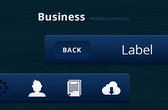 Business iPhone Controls