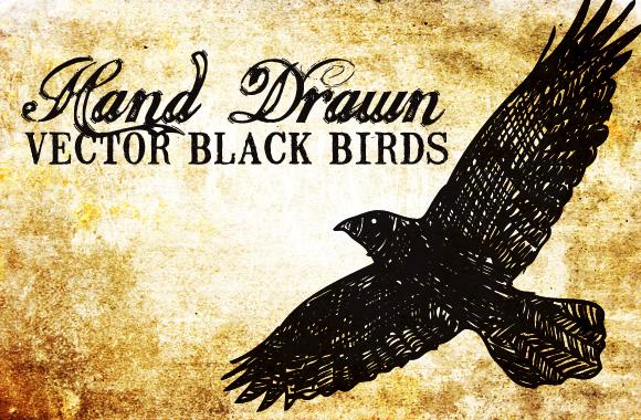 20 Hand Drawn Vector Black Birds