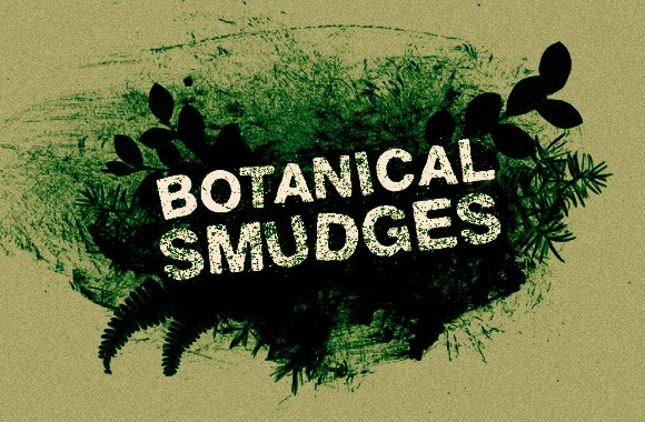 Botanical Smudges - Brushes and Vectors