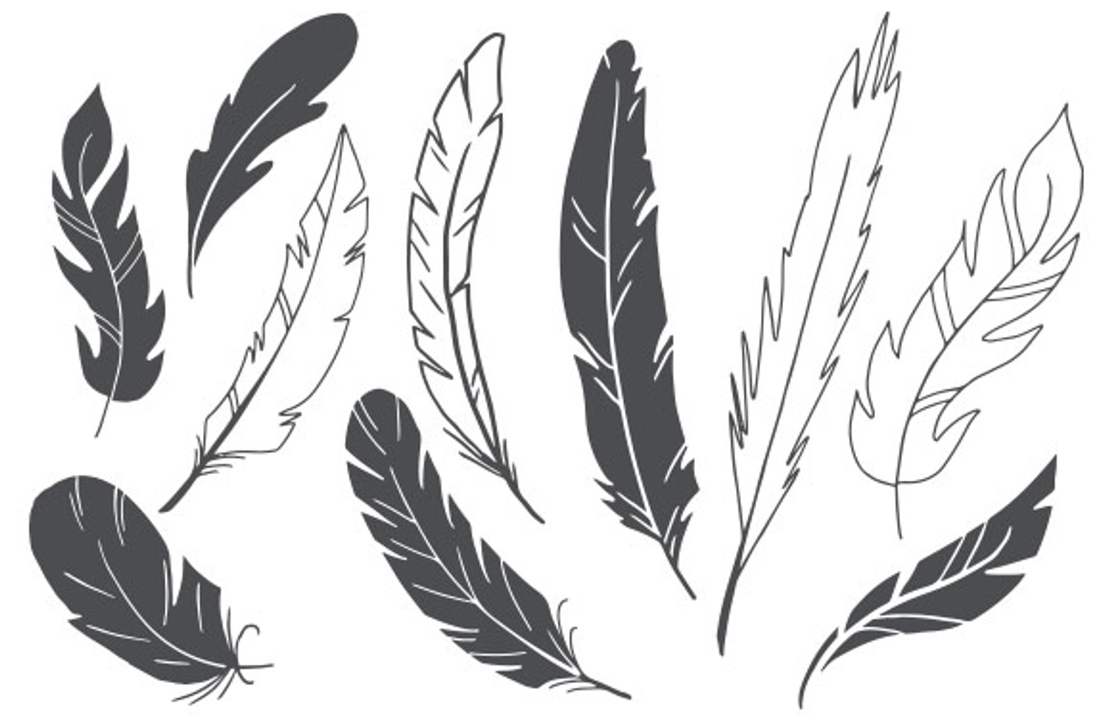 Feathers Slide3