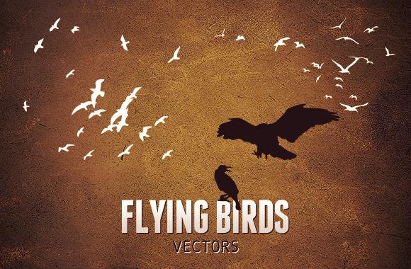 Flying Birds Vector Set