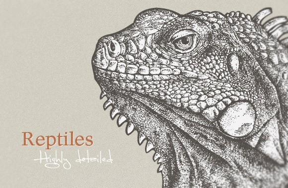 Highly detailed cold-blooded animals
