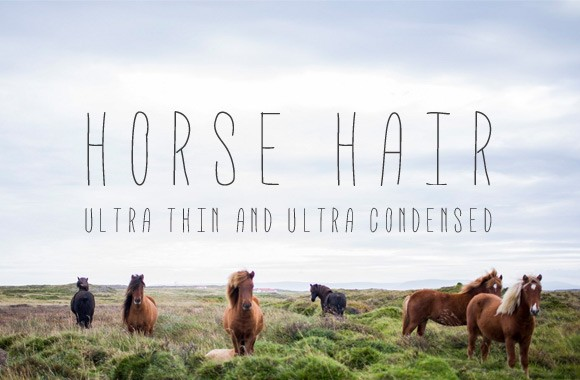 Horse Hair - Ultra Thin Font Face