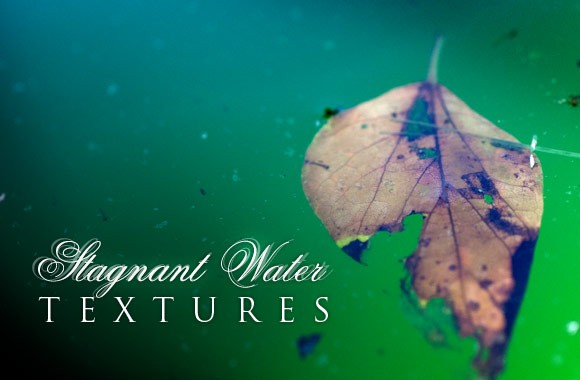 Stagnant Water Texture Set