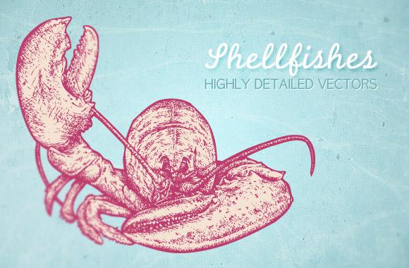 Shellfishes vector illustrations