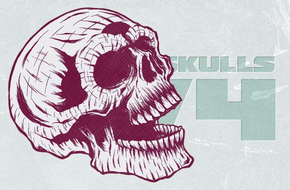 Highly detailed skulls vol4