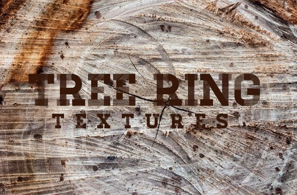 Tree Ring Texture Collection