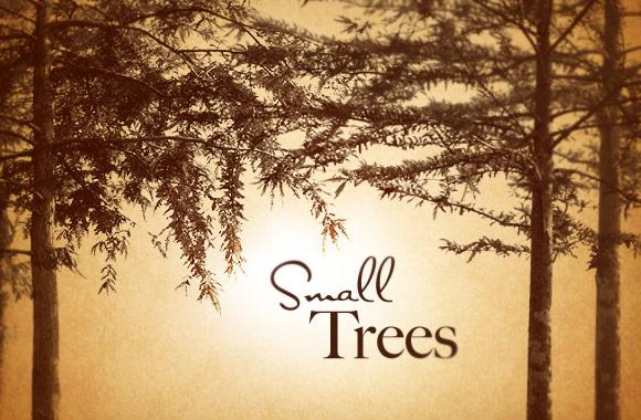 Small Trees Photoshop Brush Set