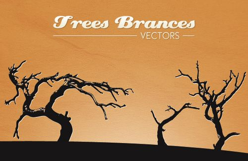 Trees Branches