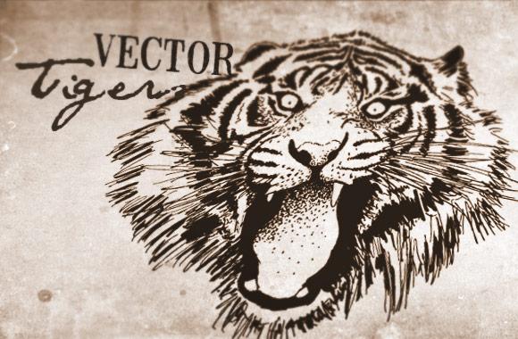 Vector Tigers