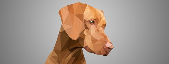 Design Your Own Polygon Art