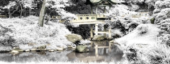 How to Make a Fake Color Infrared Effect in Photoshop