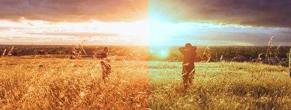 Photoshop Quick Tip: How to Swap Colors Between Photos
