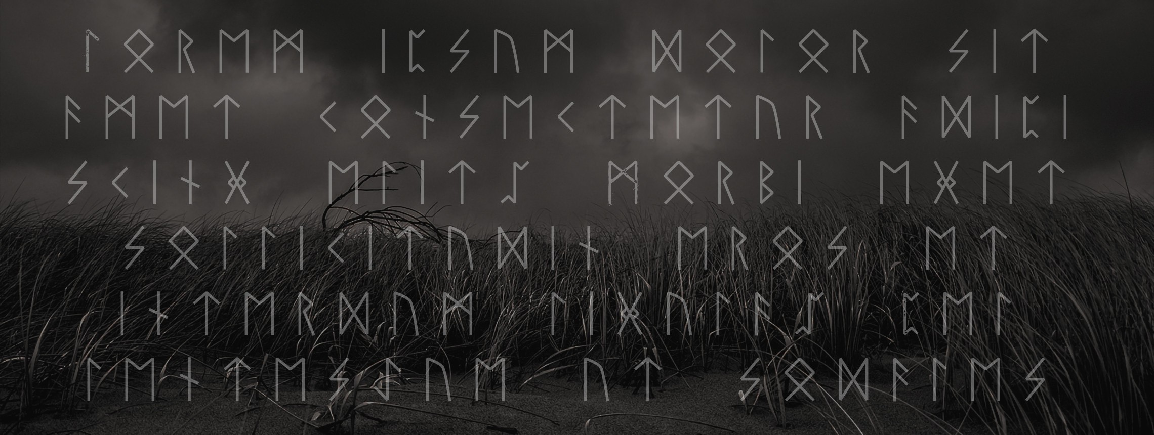 8 Nordic Runes Symbols Fonts and Typefaces