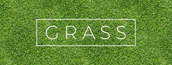 18 Seamless Grass Textures for Green Lawns and Pastures