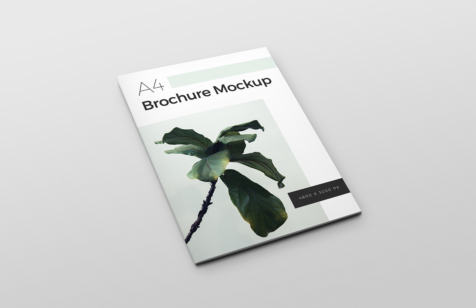 Free A4 Brochure Mockup for Photoshop