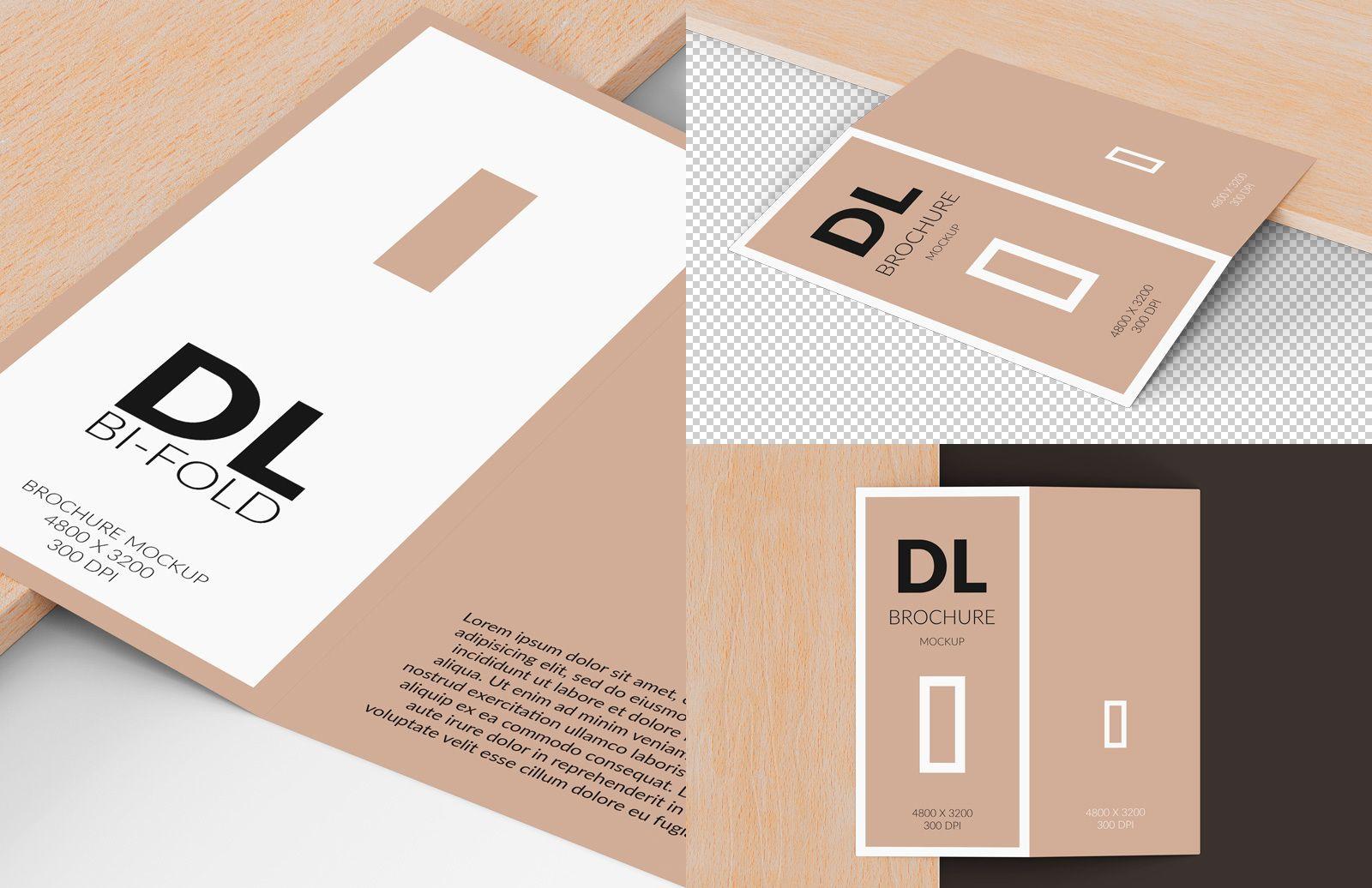 Bi Fold Dl Brochure Mockup Preview 1