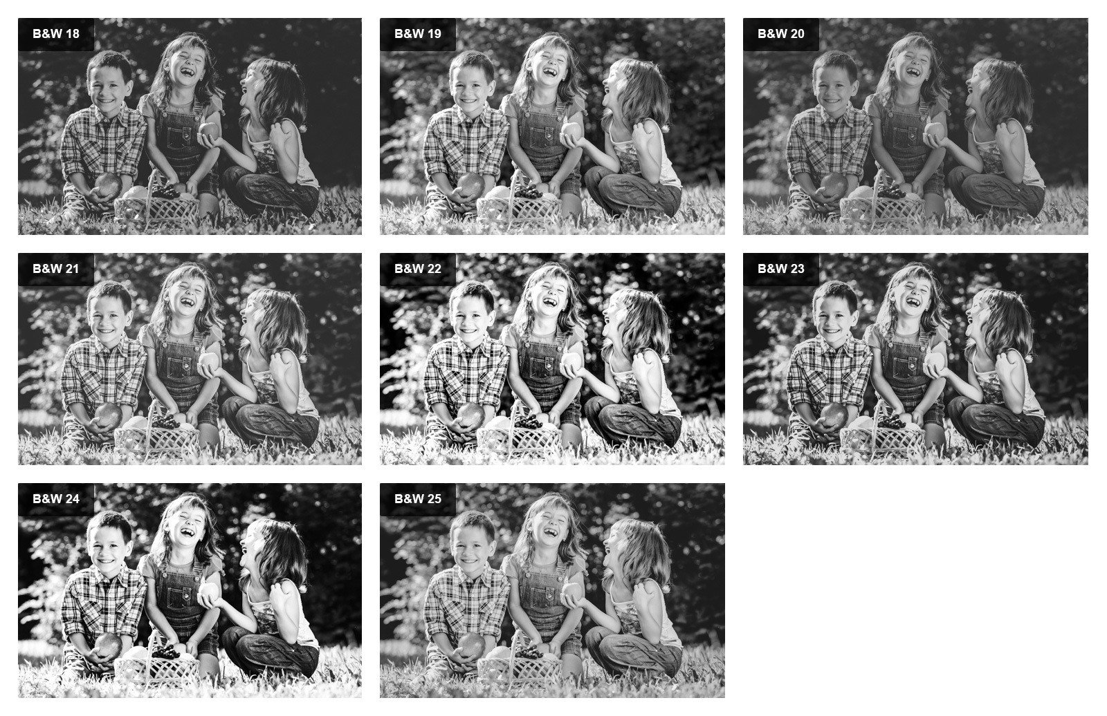 Black And White Lightroom Presets Preview 5
