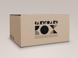 Cardboard Box Packaging Mockup 1