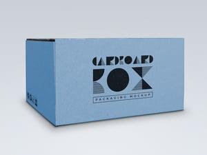 Cardboard Box Packaging Mockup 2