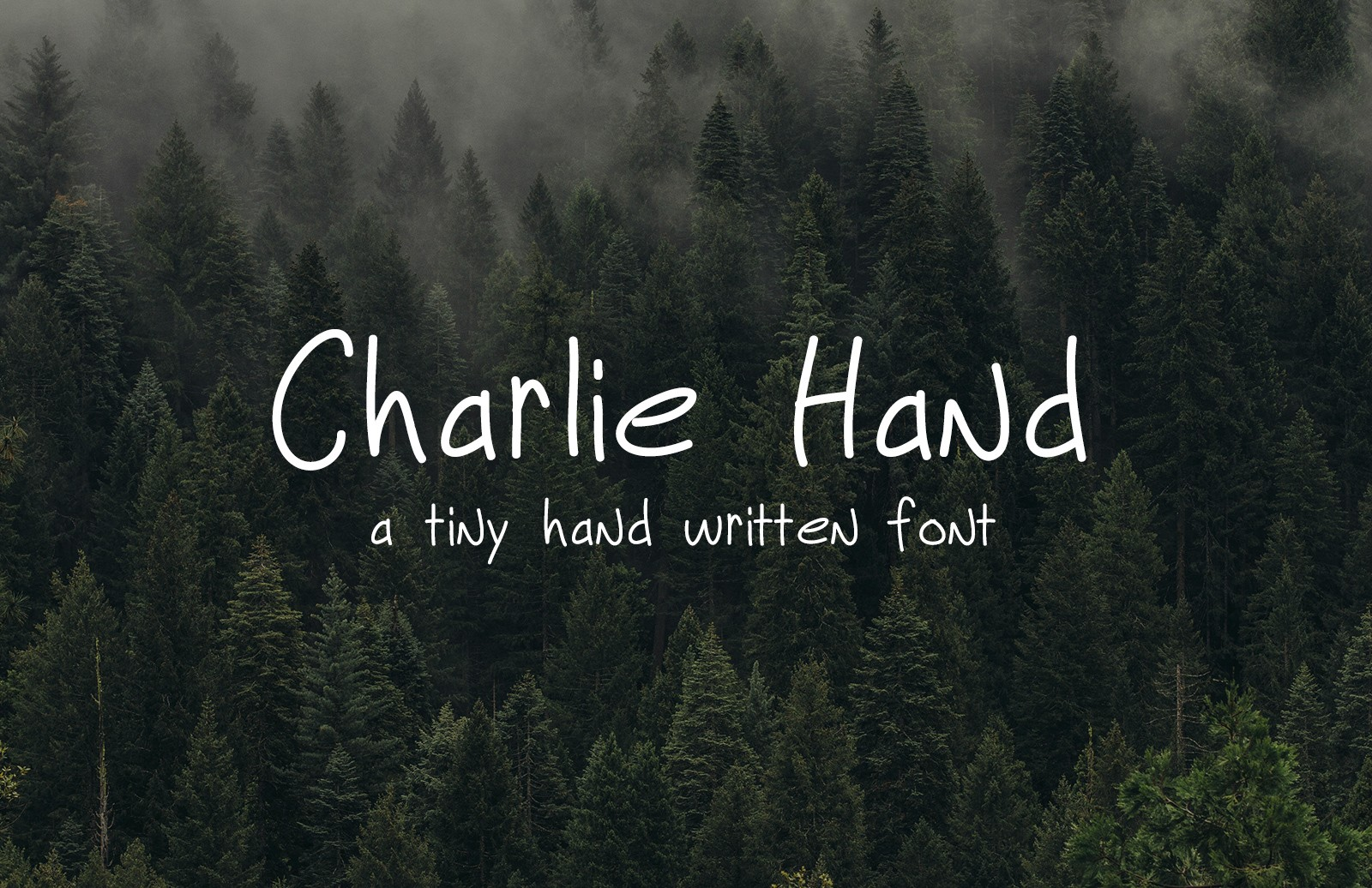 Charlie Hand Font Preview 1