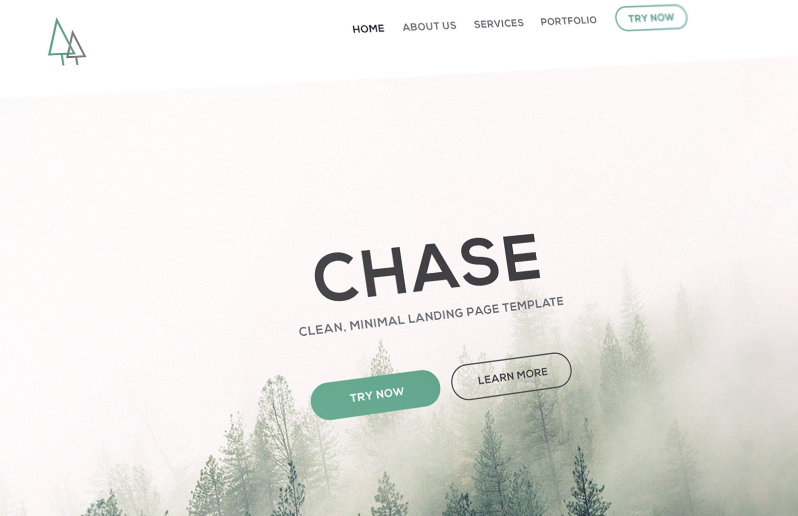 Chase Landing Page Template (PSD/HTML) 1