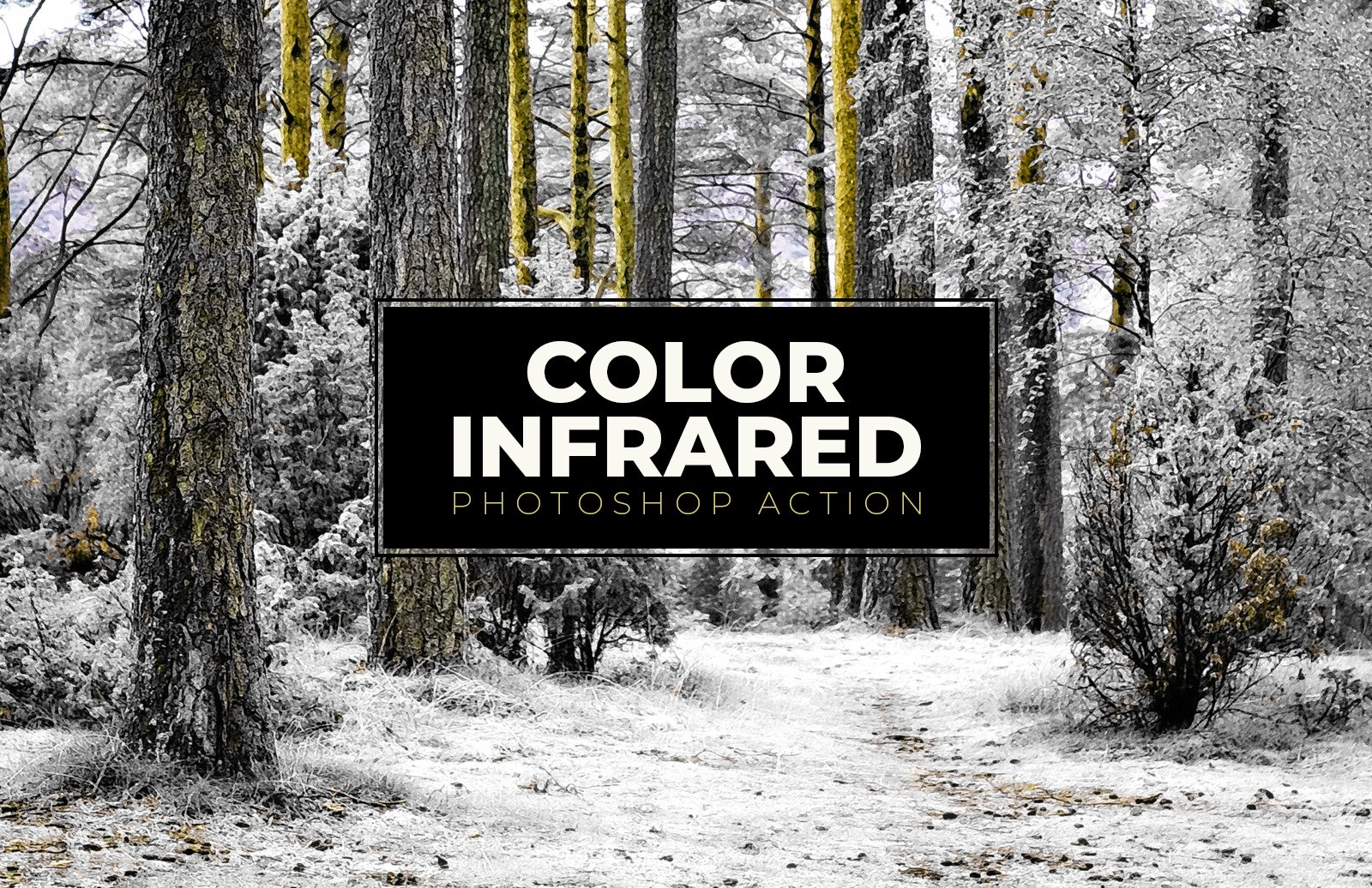 Color Infrared Photoshop Action