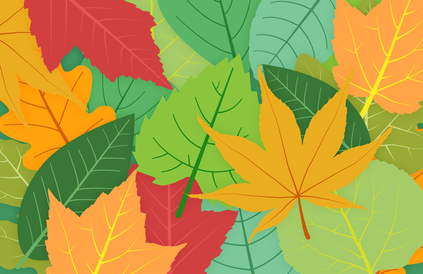 Colorful  Vector  Leaves  Preview 1