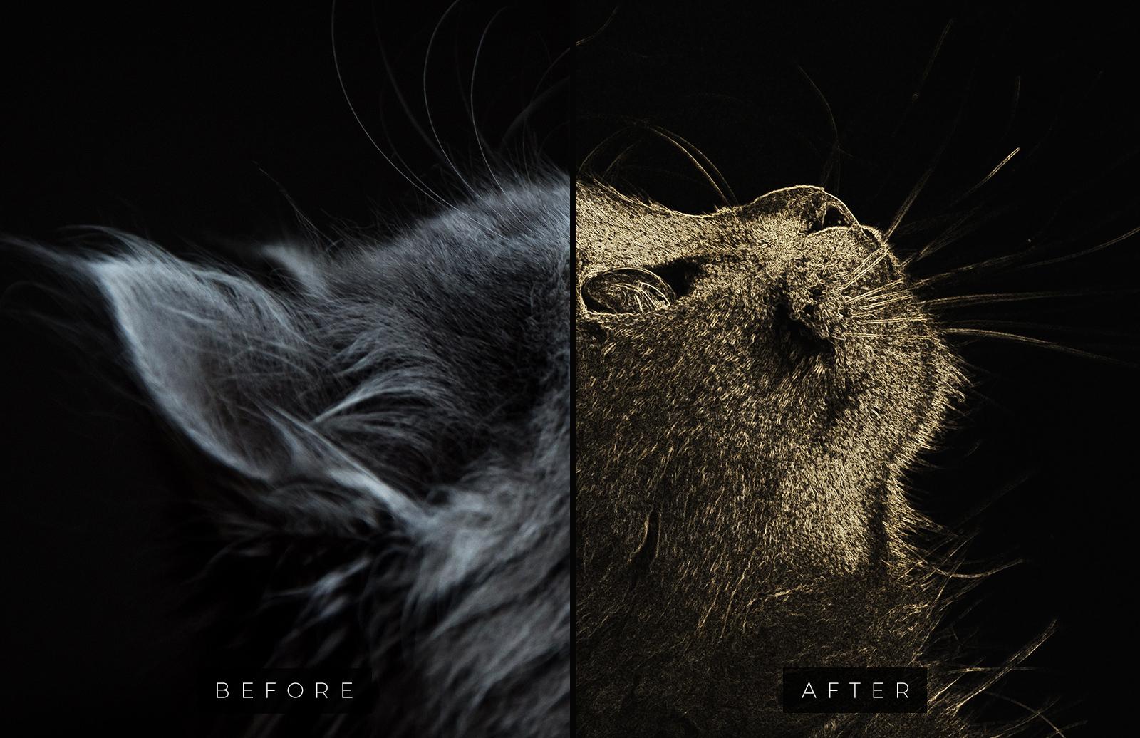 Free Foil Engraving Art Photoshop Effect 2
