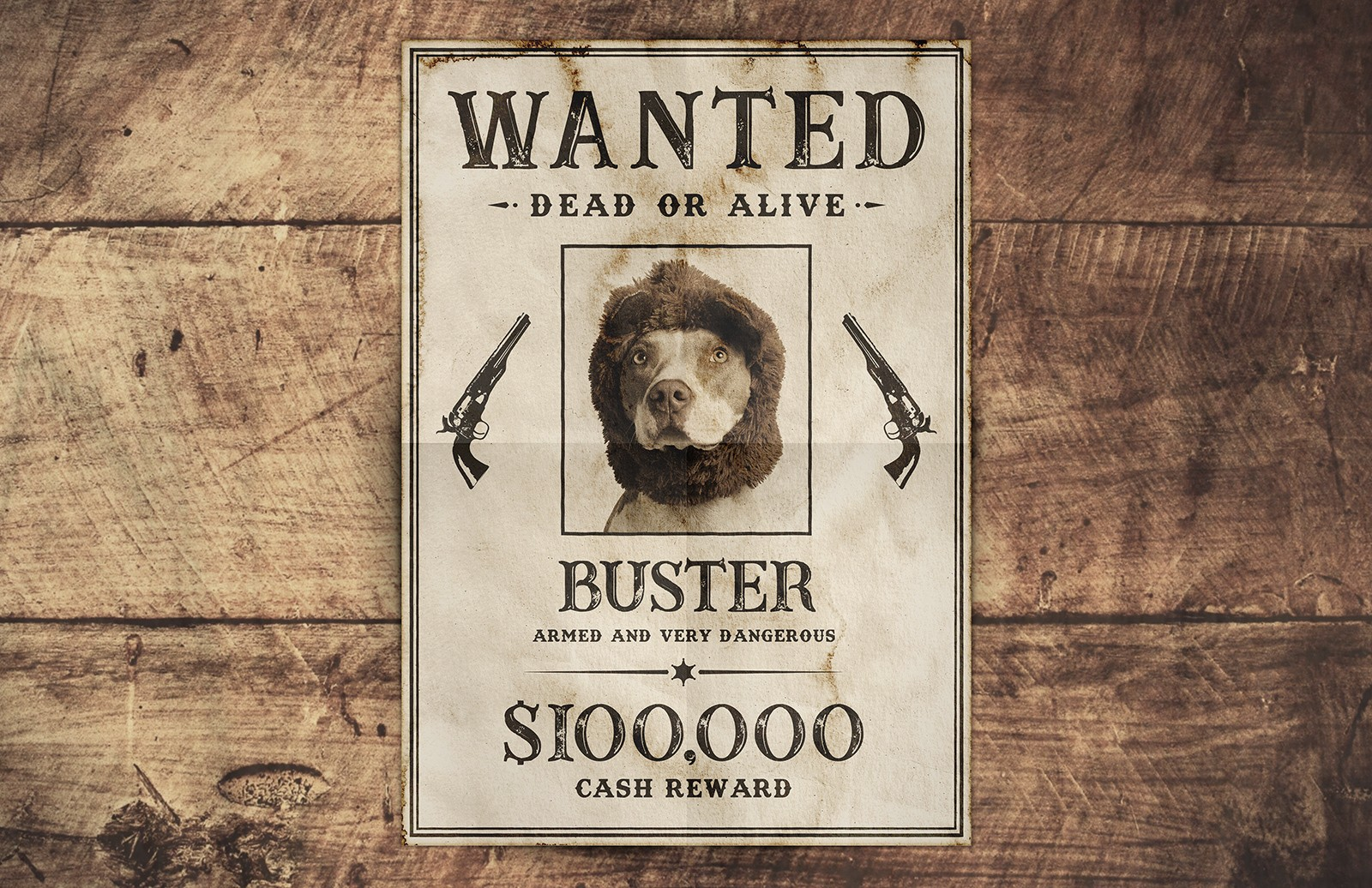 Free Wanted Poster Template Preview 1B