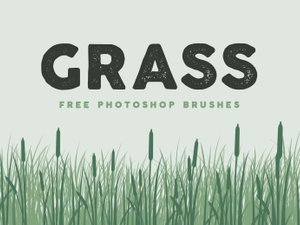 Free Grass Brushes for Photoshop 1