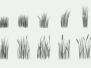 Free Grass Brushes for Photoshop 2