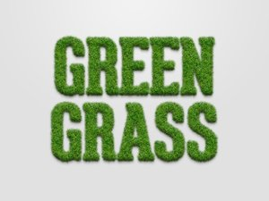 Grass Text Effect for Photoshop 2