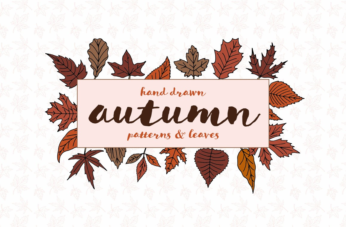 Hand Drawn Autumn Patterns & Leaves