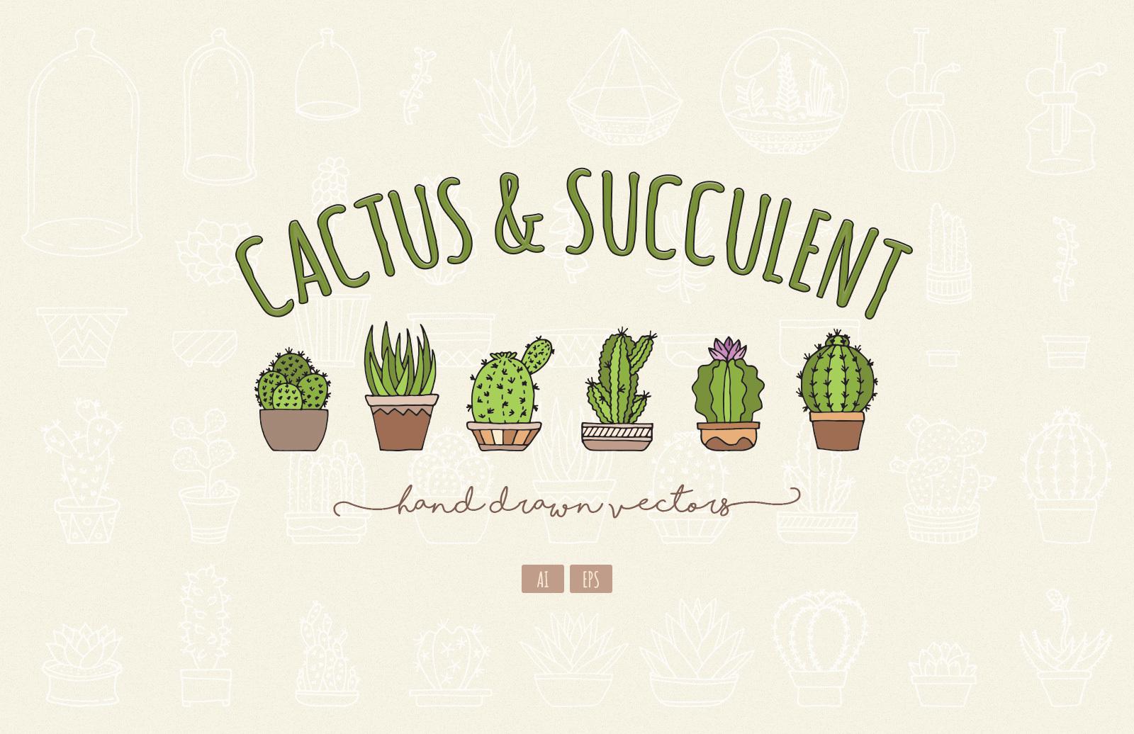Hand Drawn Cactus & Succulent Vectors