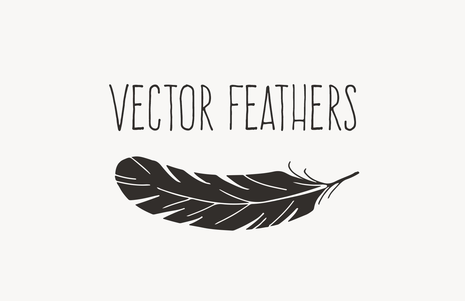 Hand Drawn Vector Feathers 1