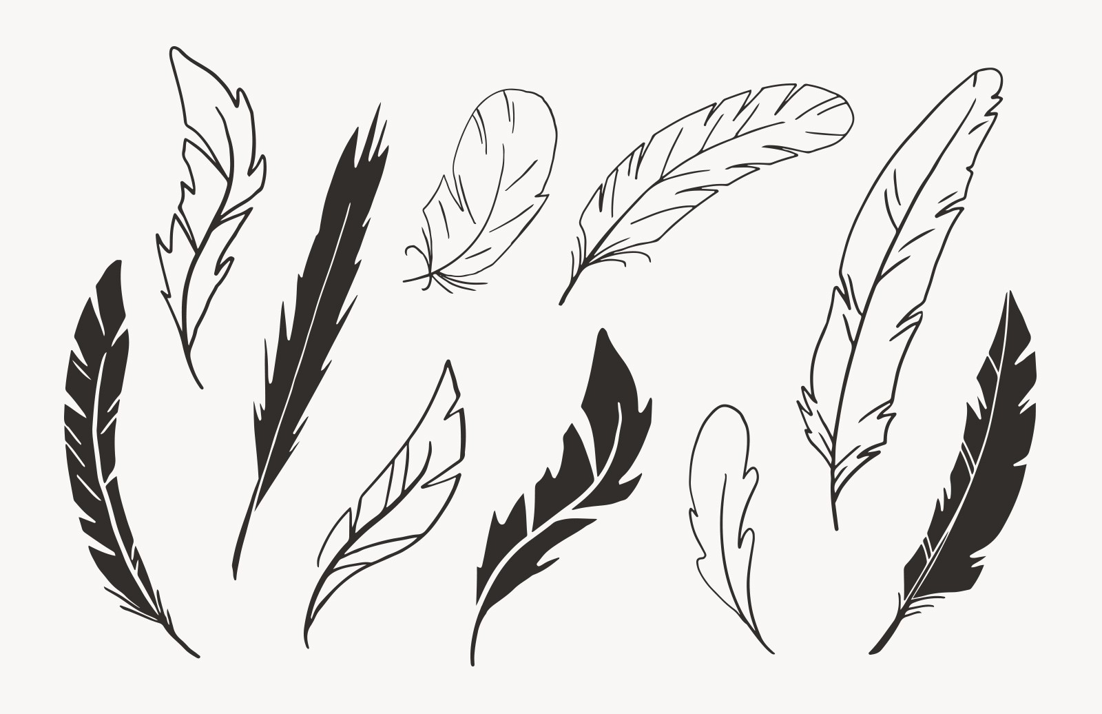 Hand Drawn Vector Feathers 2