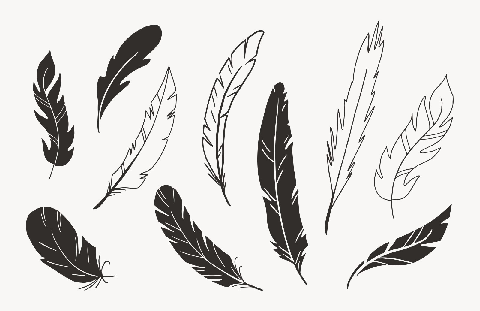 Large Hand Drawn Vector Feathers Preview 3
