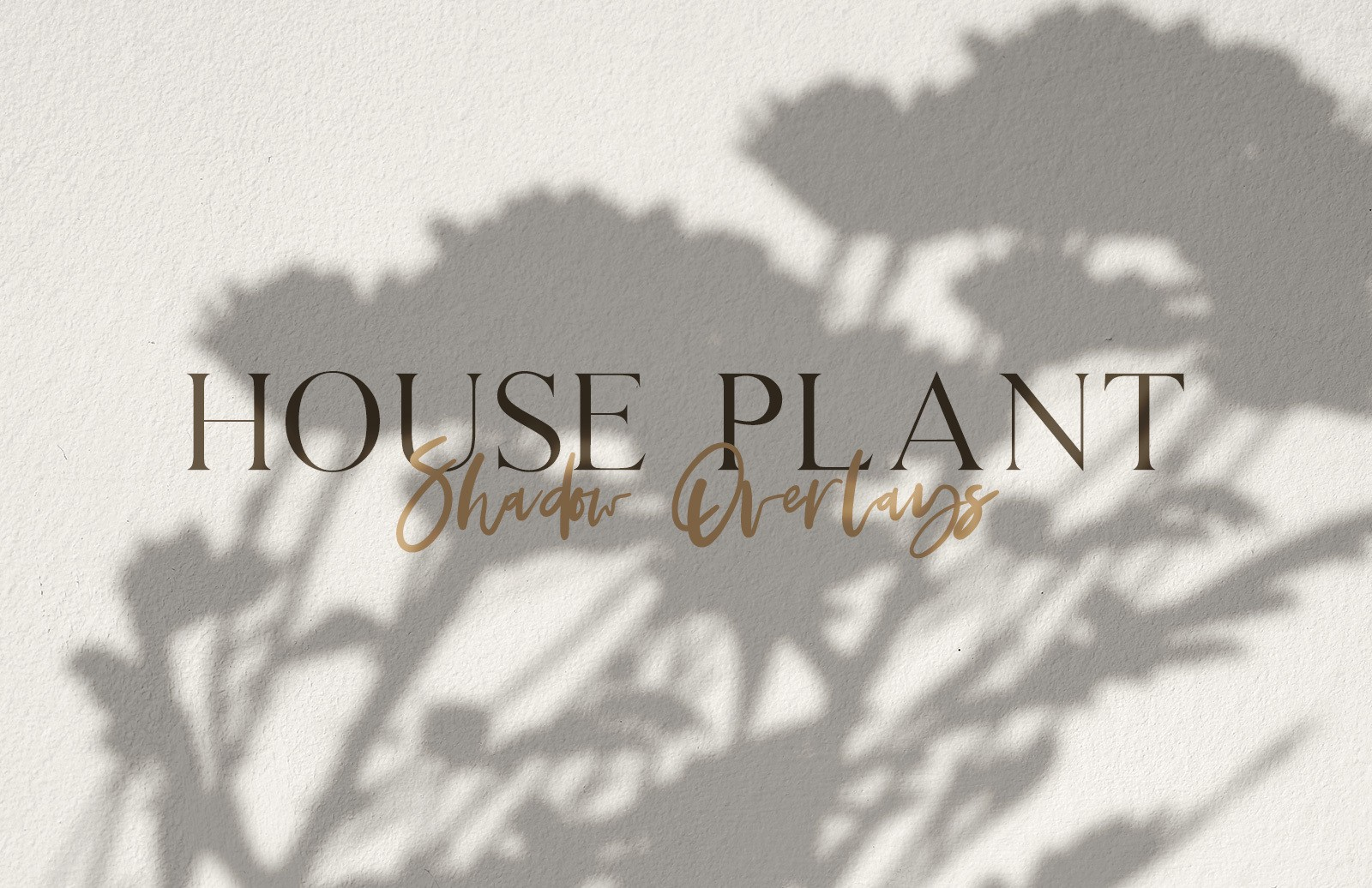 House Plant Shadow Overlays Preview 1
