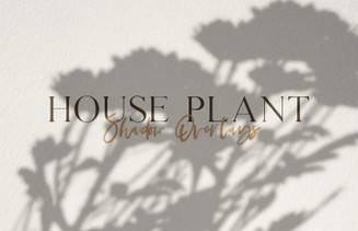 House Plant Shadow Overlays