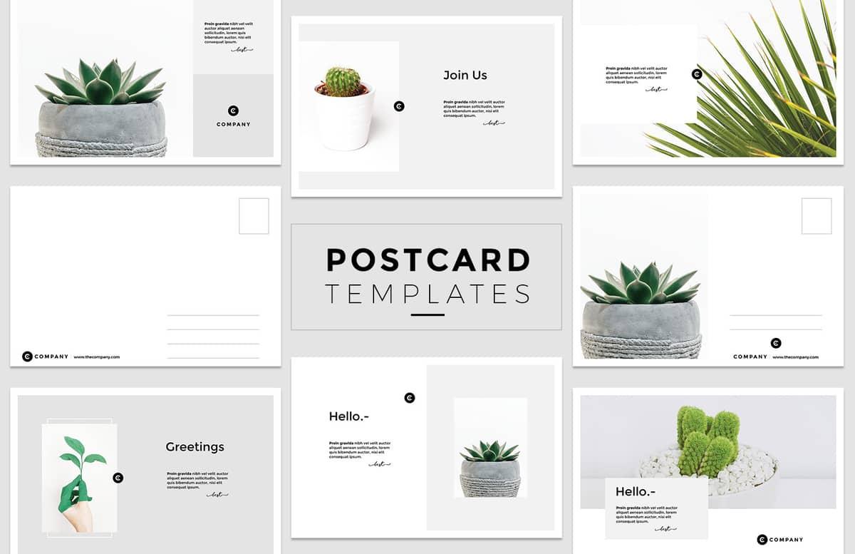 Minimal Postcard Templates Preview 1