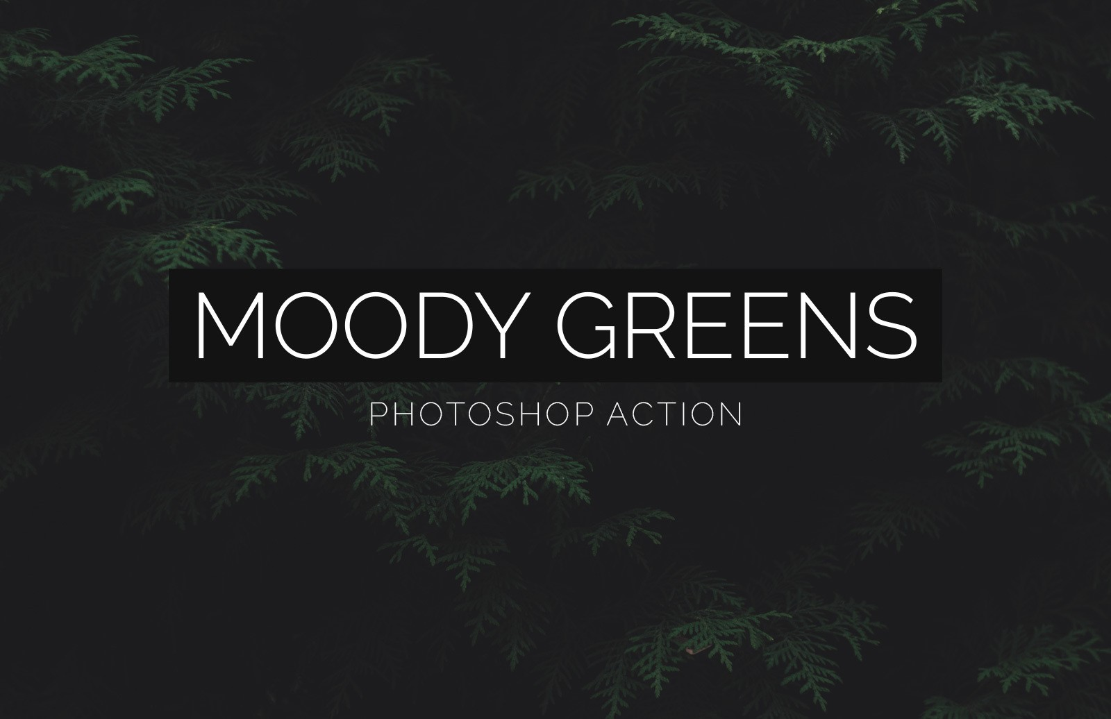 Moody Greens Photoshop Action Preview 1