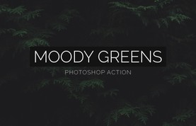 Moody Greens Photoshop Action